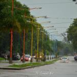 Día de lluvia - Fernando Nini