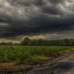 tormenta-perfecta-campo