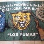 Los pumas - 24 - 06 - 16